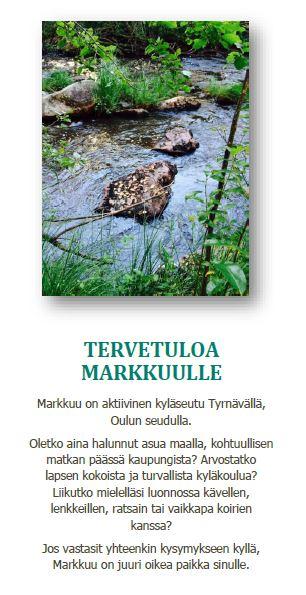 Markkuu_esite
